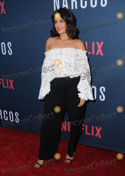 Ana De la reguera Photo - 24 August 2016 - Hollywood California Ana de la Reguera Netflixs Narcos Season 2 Premiere and Screening held at Arclight Hollywood Photo Credit Birdie ThompsonAdMedia