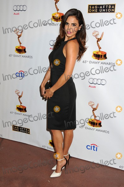 Azita Ghanizada Photo - 17 September 2013 - North Hollywood California - Azita Ghanizada Academy of Television Arts  Sciences Dynamic and Diverse 2013 Emmy Nominee Reception Photo Credit Byron PurvisAdMedia