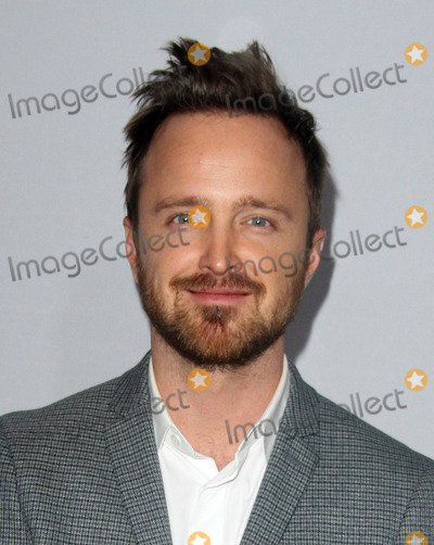 Aaron Paul Photo - 7 January 2017 - Los Angeles California - Aaron Paul Hulus Winter TCA 2017 Red Carpet held at the The Langham Huntington Hotel Photo Credit AdMedia