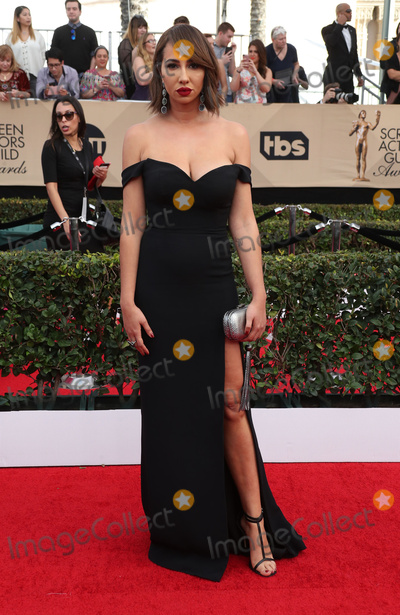 Jackie Cruz Photo - 29 January 2017 - Los Angeles California - Jackie Cruz 23rd Annual Screen Actors Guild Awards held at The Shrine Expo Hall Photo Credit F SadouAdMedia