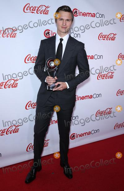 Ansel Elgort Photo - 30 March 2017 - Las Vegas NV -  Ansel Elgort 2017 CinemaCon Big Screen Achievement Awards at Caesars Palace  Photo Credit MJTAdMedia