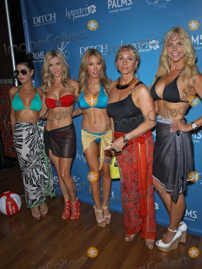 Alexia Echevarria Photo - 08 June 2013 - Las Vegas NV -  Adriana DeMoura Joanna Krupa Lisa Hochstein Lea Black Alexia Echevarria Joanna Krupa hosts Bikini Line Launch at Ditch Saturdays at Palms Pool at Palms Casino ResortPhoto Credit mjtAdMedia