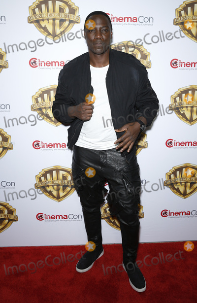 Adewale Akinnuoye-Agbaje Photo - 12 April 2016 - Las Vegas Nevada -  Adewale Akinnuoye-Agbaje Warner Brothers Pictures presents The Big Picture at 2016 CinemaCon at The Colosseum of Caesars Palace Photo Credit MJTAdMedia