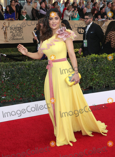 Salma Hayek Photo - 29 January 2017 - Los Angeles California - Salma Hayek 23rd Annual Screen Actors Guild Awards held at The Shrine Expo Hall Photo Credit F SadouAdMedia