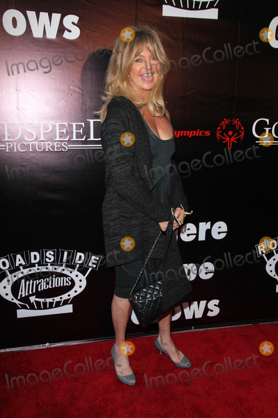 Goldie Photo - Goldie Hawnat the Where Hope Grows Los Angeles Premiere Arclight Hollywood CA 05-04-15