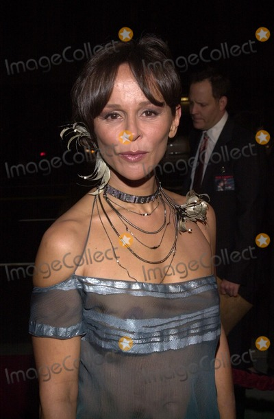 Christine Boisson Photo - Christine Boisson at the premiere of Universals The Truth About Charlie at Academy of Motion Picture Arts and Sciences Samuel Goldwyn Theater Beverly Hills CA 10-16-02