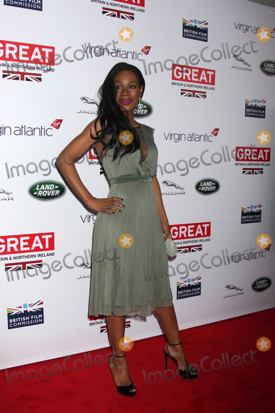 Amma Assante Photo - LOS ANGELES - FEB 28  Amma Assante at the 2014 GREAT British Oscar Reception at The British Residence on February 28 2014 in Los Angeles CA