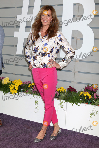 Allison Janney Photo - LOS ANGELES - NOV 5  Allison Janney at the 33rd Breeders Cup World Championship at the Santa Anita Park on November 5 2016 in Arcadia CA