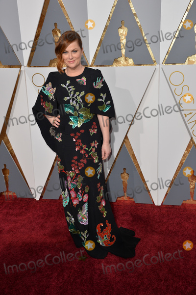 Amy Poehler Photo - Amy Poehler at the 88th Academy Awards at the Dolby Theatre HollywoodFebruary 28 2016  Los Angeles CAPicture Paul Smith  Featureflash