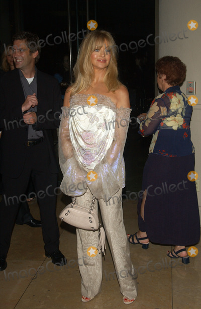 Goldie Photo - Actress GOLDIE HAWN at the 2003 Hollywood Awards at the Beverly Hills HiltonOct 20 2003 Paul Smith  Featureflash