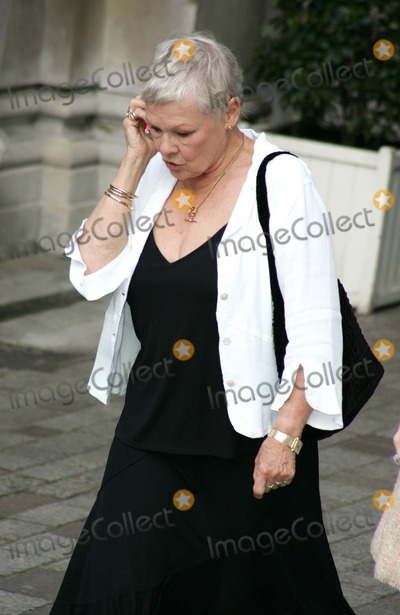 Judi Dench Photo - London Dame Judy Dench at the Preview Party for the Royal Academy of Arts Summer Exhibition2 June 2005Keith MayhewLandmark Media