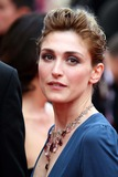 Julie Gayet Photo 4