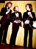 The Bee GEES Photo 4