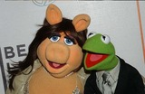 Miss Piggy Photo 4