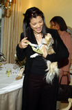 Jimmy Choo Photo - Jimmy Choos Oscar 2002 Collection Photo by Amy GravesGlobe Photos Inc 2002 Kelly Hu and Dog Lucy