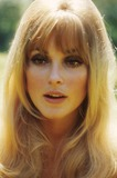 Sharon Tate Photo 4