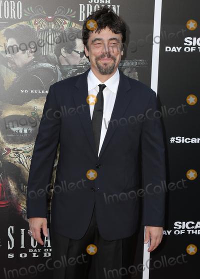 Benicio Del Toro Photo - 26 June 2018 - Westwoof California - Benicio del Toro Premiere of Sicario Day of the Soldado held at Westwood Regency Theater  Photo Credit PMAAdMedia