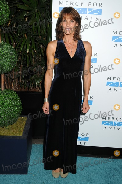 Alexandra Paul Photo - 12 September 2014 - West Hollywood California - Alexandra Paul Mercy For Animals 15th Anniversary Gala held at The London Hotel Photo Credit Byron PurvisAdMedia