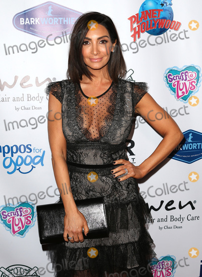 Courtney Lopez Photo - 15 November 2018 - Los Angeles California - Courtney Lopez 3rd Annual Vanderpump Dog Foundation Gala hosted by Lisa Vanderpump at the Taglyan Cultural Complex Photo Credit F SadouAdMedia