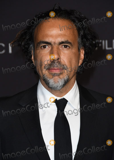 Alejandro Gonzalez Inarritu Photo - 03 November 2018 - Los Angeles California - Alejandro Gonzalez Inarritu 2018 LACMA Art  Film Gala held at LACMA Photo Credit Birdie ThompsonAdMedia