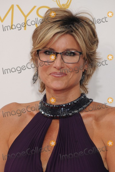 Ashleigh Banfield Photo - 25 August 2014 - Los Angeles California - Ashleigh Banfield 66th Annual Primetime Emmy Awards - Arrivals held at Nokia Theatre LA Live Photo Credit Byron PurvisAdMedia