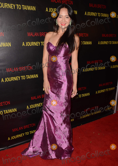 Angela Pai Photo - 17 August 2015 - Westwood California - Angela Pai Arrivals for the premiere of A Journey to Taiwan held at The Theater at The Regent Landmark Theater Photo Credit Birdie ThompsonAdMedia
