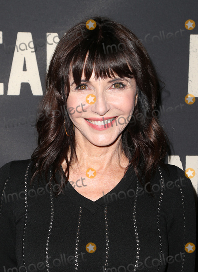 Mary Steenburgen Photo - 24 May 2017 -  Hollywood California - Mary Steenburgen Screening Of CBS Films Dean held at ArcLight Hollywood Photo Credit Faye SadouAdMedia