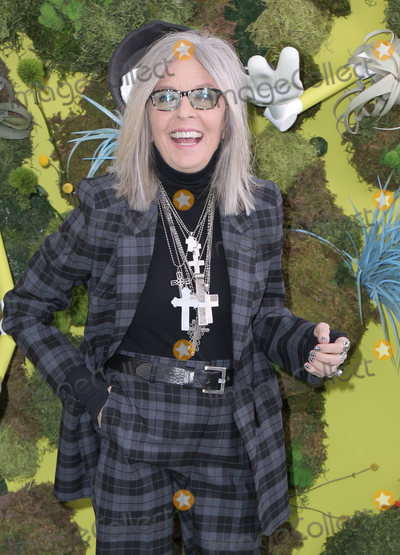 Diane Keaton Photo - 03 November 2019 - Los Angeles California - Diane Keaton Premiere Of Netflixs Green Eggs And Ham held at Hollywood American Legion Photo Credit PMAAdMedia