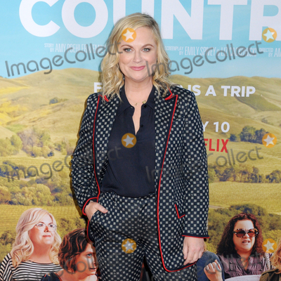 Amy Poehler Photo - Amy Poehler at the World Premiere of WINE COUNTRY at the Paris Theater in New York New York  USA 08 May 2019