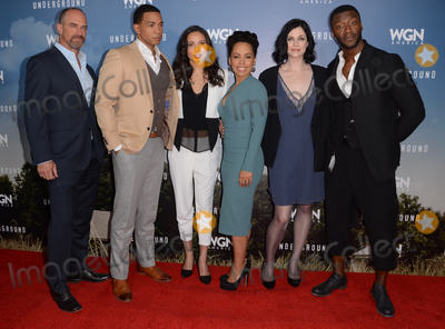 Aldis Hodge Photo - 08 January  - Pasadena Ca - Chris Meloni Alano Miller Jurnee Smollett-Bell Amirah Vann Jessica de Gouw Aldis Hodge Arrivals for the WGN America Winter TCA Tour Underground held at The Langham Hotel Photo Credit Birdie ThompsonAdMedia