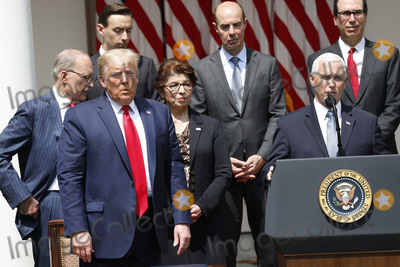 The National Photo - United States President Donald J Trump left reacts as US Vice President Mike Pence right speaks after signing HR 7010 - PPP Flexibility Act of 2020 in the Rose Garden of the White House in Washington on June 5 2020 Standing in the back row from left to right Director of the National Economic Council Larry Kudlow Tyler Goodspeed member of Council of Economic Advisers Jovita Carranza administrator US Small Business Administration (SBA) US Secretary of Labor Eugene Scalia and US Secretary of the Treasury Steven T MnuchinCredit Yuri Gripas  Pool via CNPAdMedia