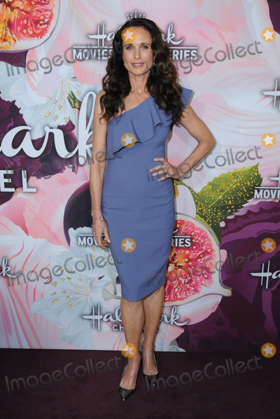 Andie Macdowell Photo - 13 January 2018 - Pasadena California - Andie MacDowell Hallmark Channel and Hallmark Movies  Mysteries Winter 2018 TCA Event held at Tournament House Photo Credit Birdie ThompsonAdMedia