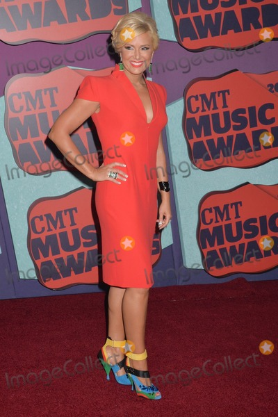 Allison DeMarcus Photo - 04 June 2014 - Nashville Tennessee - Allison DeMarcus 2014 CMT Music Awards held at Bridgestone Arena Photo Credit Laura FarrAdMedia