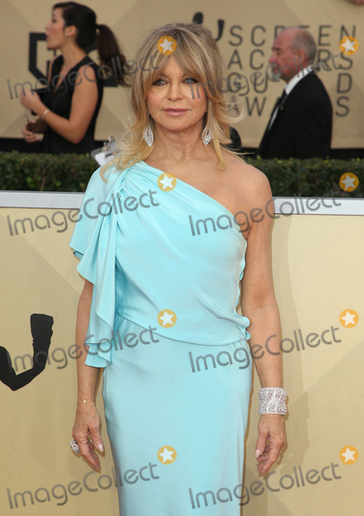 Goldie Hawn Photo - 21 January 2018 - Los Angeles California - Goldie Hawn 24th Annual Screen Actors Guild Awards held at The Shrine Auditorium Photo Credit RetnaAdMedia