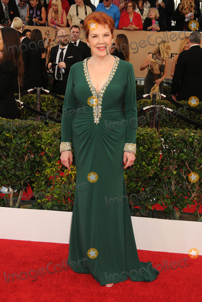 Beth Fowler Photo - 30 January 2016 - Los Angeles California - Beth Fowler 22nd Annual Screen Actors Guild Awards held at The Shrine Auditorium Photo Credit Byron PurvisAdMedia