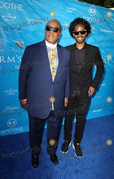 Brett Ratner Photo - 10 August 2016 - Los Angeles California - Stevie Wonder and Kwame Morris Brett Ratner And David Raymond Host Special Event For UN Secretary-General Ban Ki-moon held at a Private Residence in Beverly Hills Photo Credit AdMedia