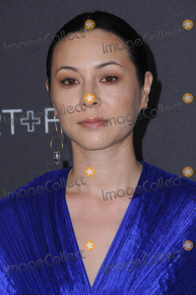 China Chow Photo - 29 October 2016 - Los Angeles California China Chow 2016 LACMA ArtFilm Gala honoring Robert Irwin and Kathryn Bigelow presented by Gucci held at LACMA Photo Credit Birdie ThompsonAdMedia