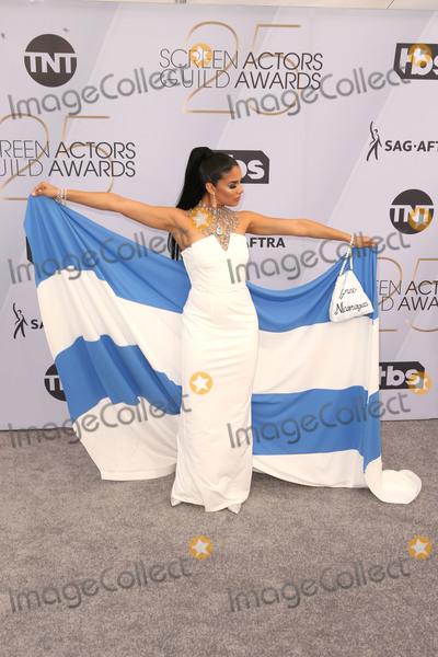 Shakira Photo - 27 January 2019 - Los Angeles California - Shakira Barrera 25th Annual Screen Actors Guild Awards held at The Shrine Auditorium Photo Credit Faye SadouAdMedia