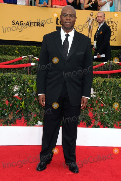 Andre Braugher Photo - 25 January 2015 - Los Angeles California - Andre Braugher 21st Annual Screen Actors Guild Awards - Arrivals held at The Shrine Auditorium Photo Credit Byron PurvisAdMedia