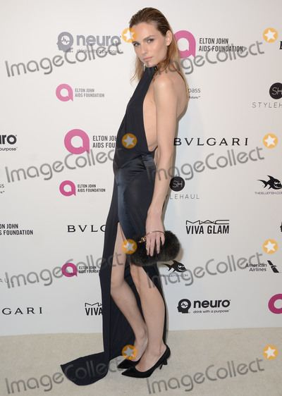 Andreja Pejic Photo - 28 February 2016 - West Hollywood California - Andreja Pejic 24th Annual Elton John Academy Awards Viewing Party sponsored by Bvlgari MAC Cosmetics Neuro Drinks and Diana Jenkins held at West Hollywood Park Photo Credit Birdie ThompsonAdMedia