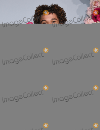 Armani Jackson Photo - 03 February 2020 - Hollywood California - Armani Jackson Premiere Of Netflixs To All The Boys PS I Still Love You at The Egyptian Theatre Photo Credit Billy BennightAdMedia