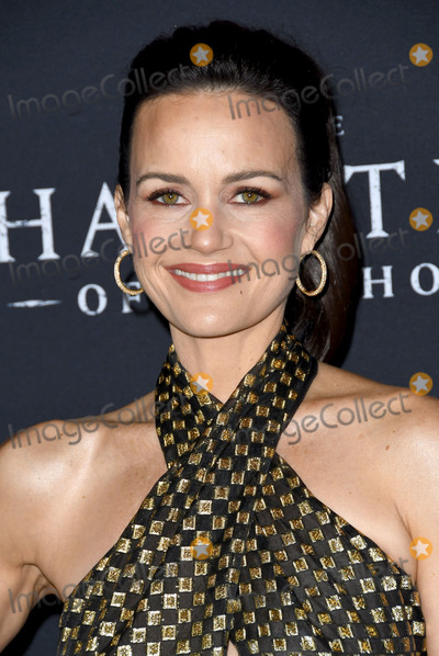 Carla Gugino Photo - 08 October 2018 - Hollywood California - Carla Gugino The Haunting of Hill House Los Angeles Premiere held at Arclight Hollywood   Photo Credit Birdie ThompsonAdMedia