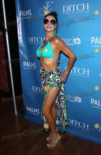Adriana DeMoura Photo - 08 June 2013 - Las Vegas NV -  Adriana DeMoura Joanna Krupa hosts Bikini Line Launch at Ditch Saturdays at Palms Pool at Palms Casino ResortPhoto Credit mjtAdMedia