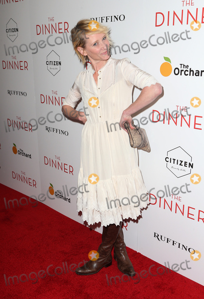 Anne Heche Photo - 01 May 2017 -  Beverly Hills California - Anne Heche Premiere Of The Orchards The Dinner held at The Writers Guild Theater Photo Credit Faye SadouAdMedia