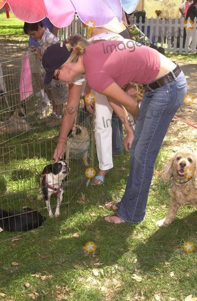 Johnny Carson Photo - Charlize Theron at the Best Friends Animal Sanctuary Pet Adoption Festival at Johnny Carson Park Burbank CA 09-14-02