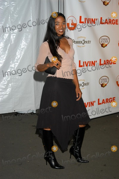 Ananda Lewis Photo - Ananda Lewis at the Valentines Engagement Party for Carmen Electra and Dave Navarro The Lounge West Hollywood CA  02-13-03