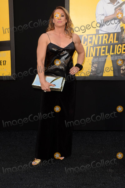 Dany Garcia Photo - Dany Garciaat the Central Intelligence Los Angeles Premiere Village Theater Westwood CA 06-10-16