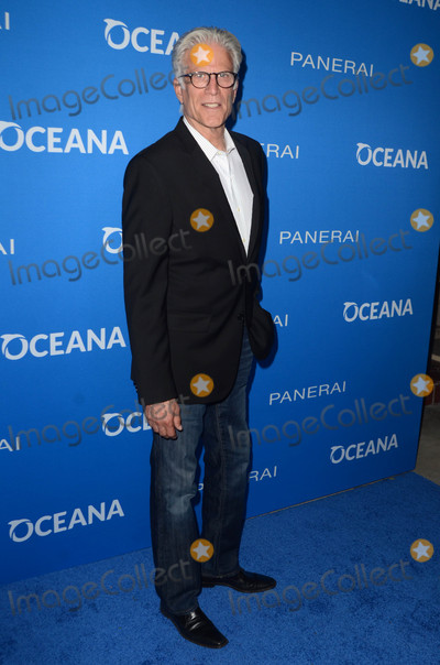 Sting Photo - Ted Dansonat Oceana Presents Sting Under The Stars Private Home Los Angeles CA 07-19-16