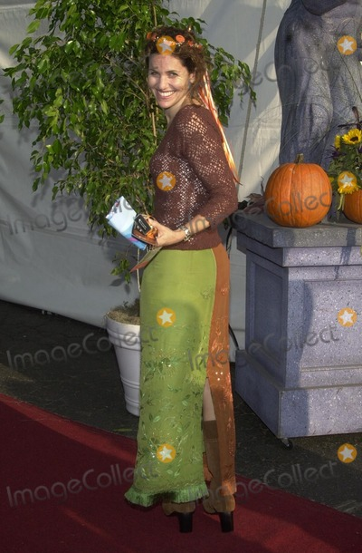 Amy Brenneman Photo - Amy Brenneman at the 9th Annual Dream Halloween Los Angeles presented by Mattel and Toys R Us a magical Halloween wonderland to benefit Children Affected by AIDS Foundation Barker Hanger Santa Monica CA 10-26-02