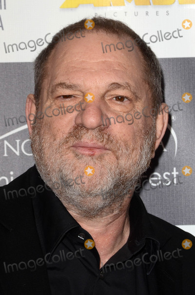 Harvey Weinstein Photo - Harvey Weinsteinat the Los Angeles Italia Film Fashion and Art Festival TCL Chinese 6 Hollywood CA 02-19-17